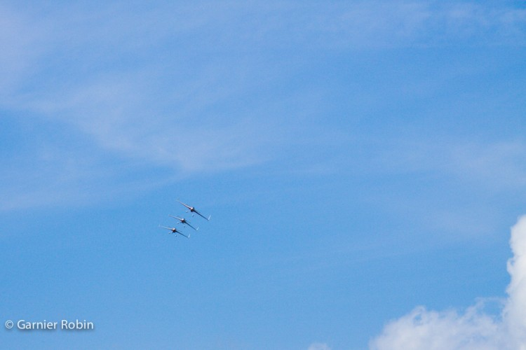IMG_3888t