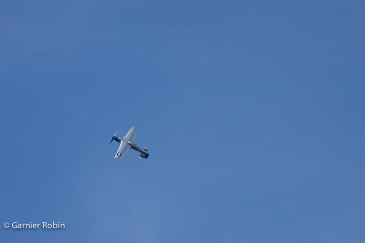 IMG_4167t